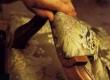 Tugitooli käetoe mööblipolstri katmine pealiskangaga