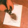 shellak ( schellak) puruna